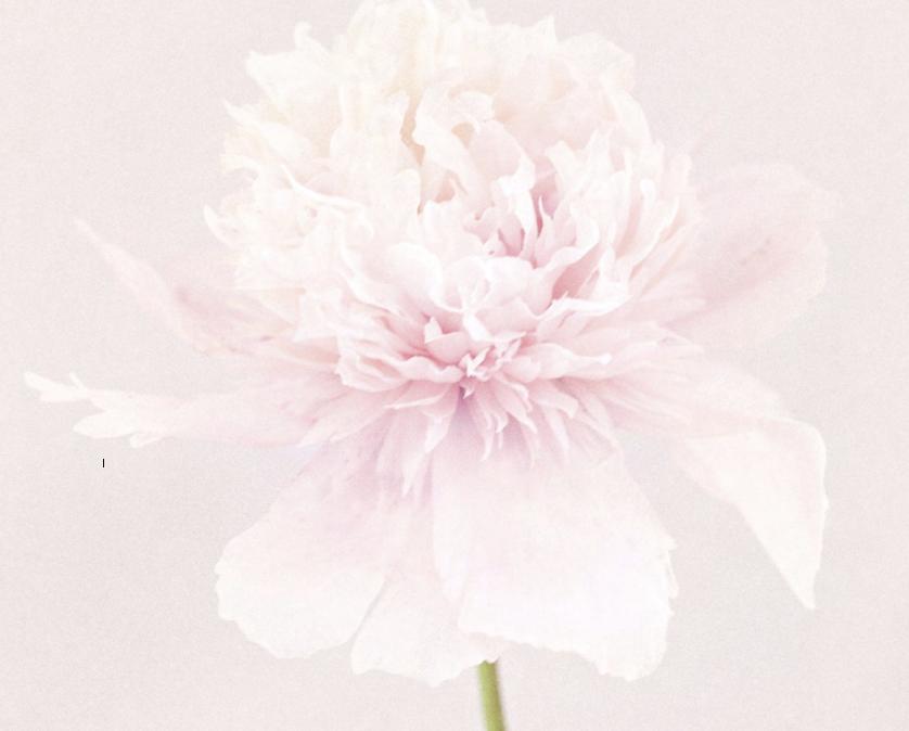 Captura de pantalla 2014-04-17 a la(s) 15.59.35