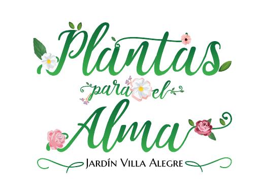 plantas-para-el-alma